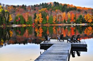 fall leaves in new york's adirondacks