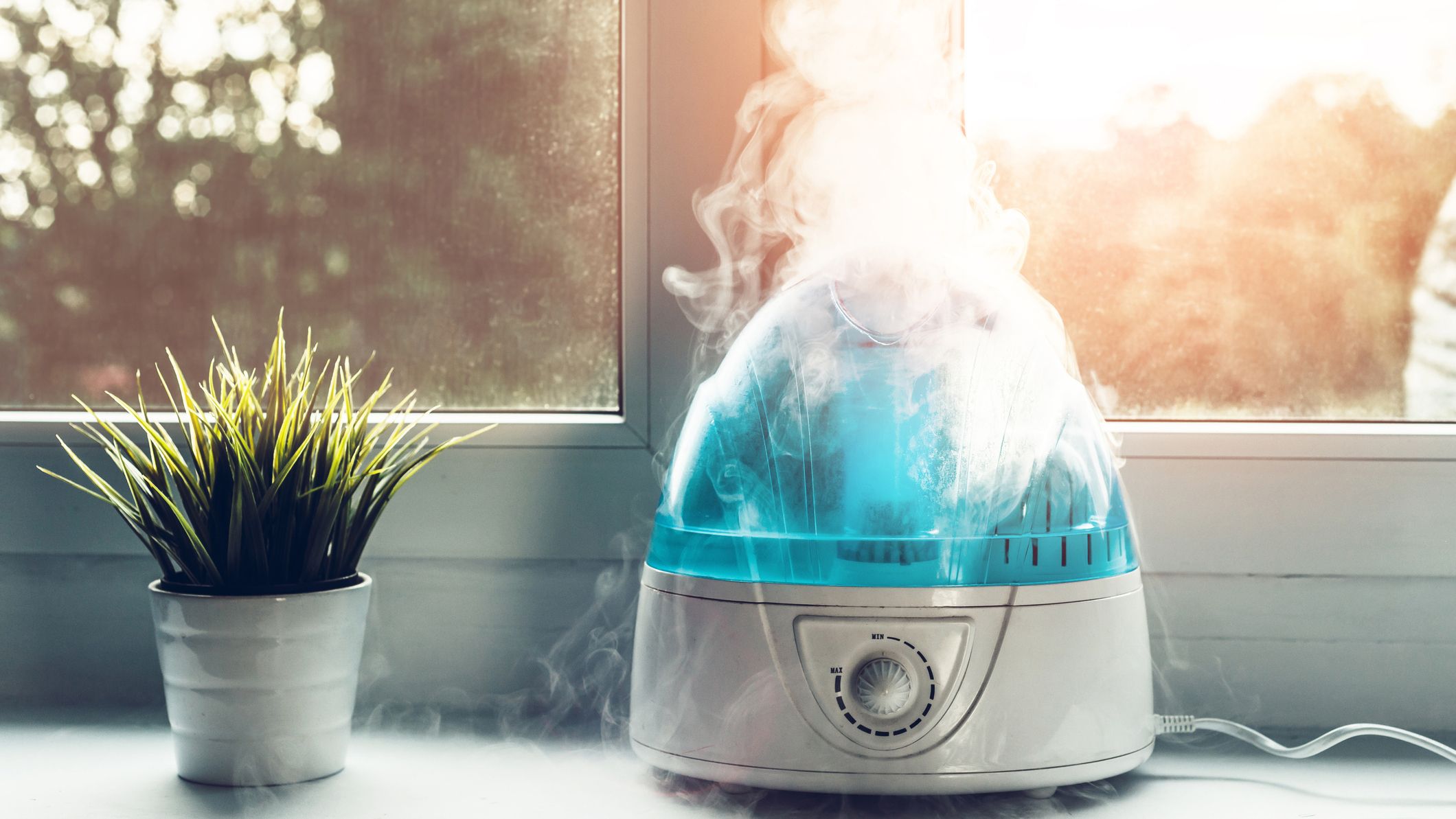 Best Humidifiers 2019: Ultrasonic, Evaporative Humidifier