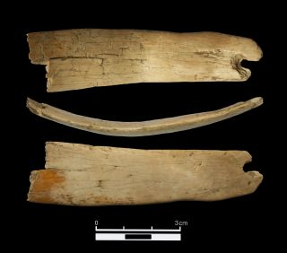 The largest fragment of an ivory tiara that was found in the Denisova Cave this summer is depicted from three separate angles.