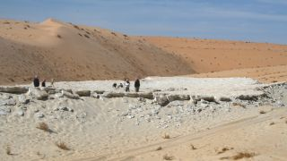 Researchers surveying the Alathar lake, situated within an interdunal depression in the western Nefud Desert, Saudi Arabia.