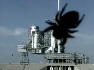 Skywatching Spider Photobombs 2019 Perseid Meteor Shower