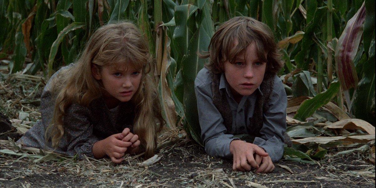 Children of the Corn children hide in cron