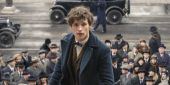 J.K. Rowling Shoots Down A Fantastic Beasts 2 Rumor