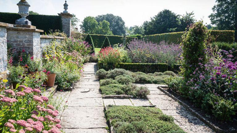 Planning a cut flower garden