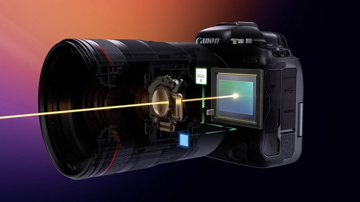 5 lenses that get 8 stops of stabilization on the Canon EOS R5 and R6