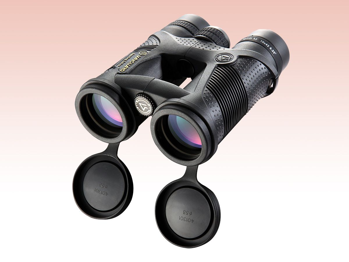 Best Binoculars 2019 for Astronomy, Nature, Sports and