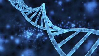DNA iStock credit ClaudioVentrella