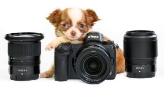 Has Nikon gone barking mad?