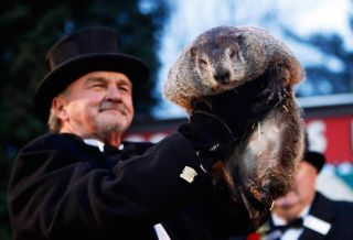 Groundhog 2017