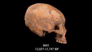 M45 skull
