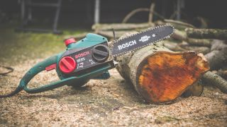 Chainsaw resting on a log