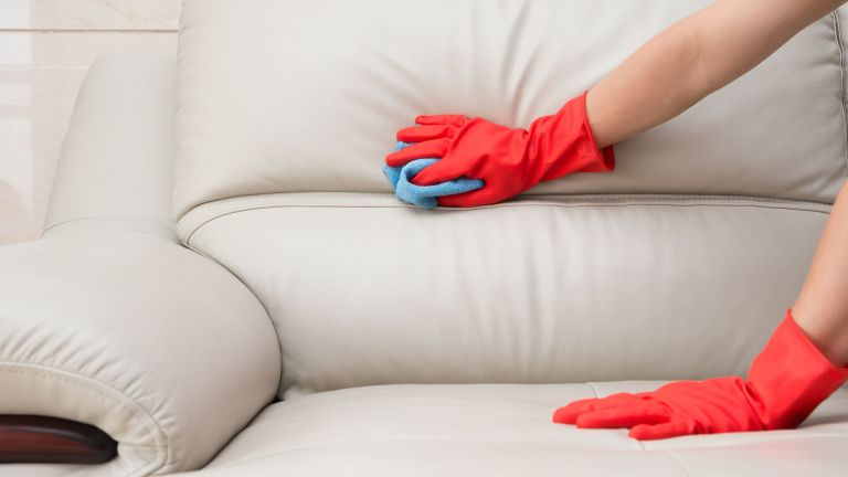 Best upholstery cleaner 2019: 8 buys to make your furniture like new ...