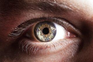 A close-up of an eye.