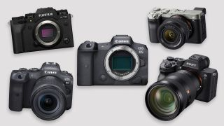 5 hottest new cameras according to Amazon