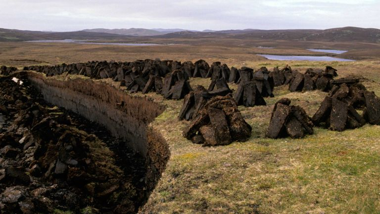 peat-free compost: peatlands having being dug for fuel