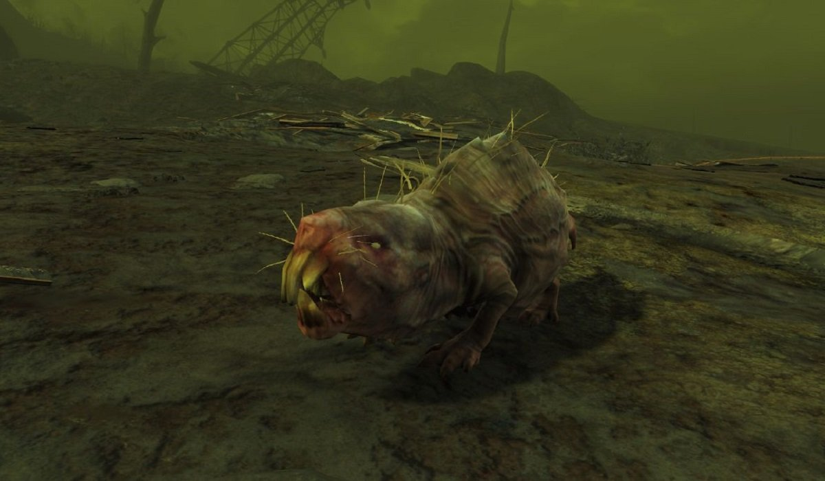 Mole Rat Fallout