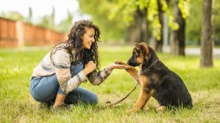 Puppy receiving treat