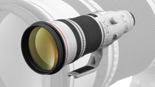 Canon is working on an RF 500mm f/4L IS lens