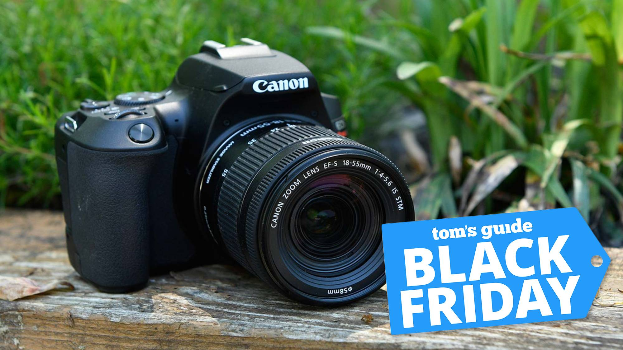 Best Black Friday Camera Deals 2020 Save On Canon Nikon Sony Gopro And More Tom S Guide