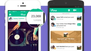 Vine Loops Count on mobile