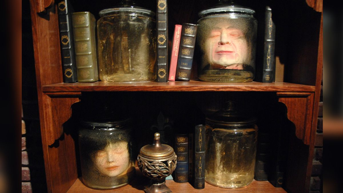 Massive Trove of Artifacts Shipped to Ripley's Believe It or Not!