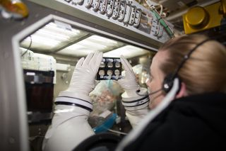 NASA astronaut Kate Rubins studied heart cells on the International Space Station.