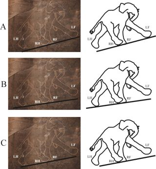 Incorrect prehistoric lion cave painting