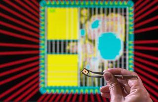 TUM's post-quantum cryptography chip