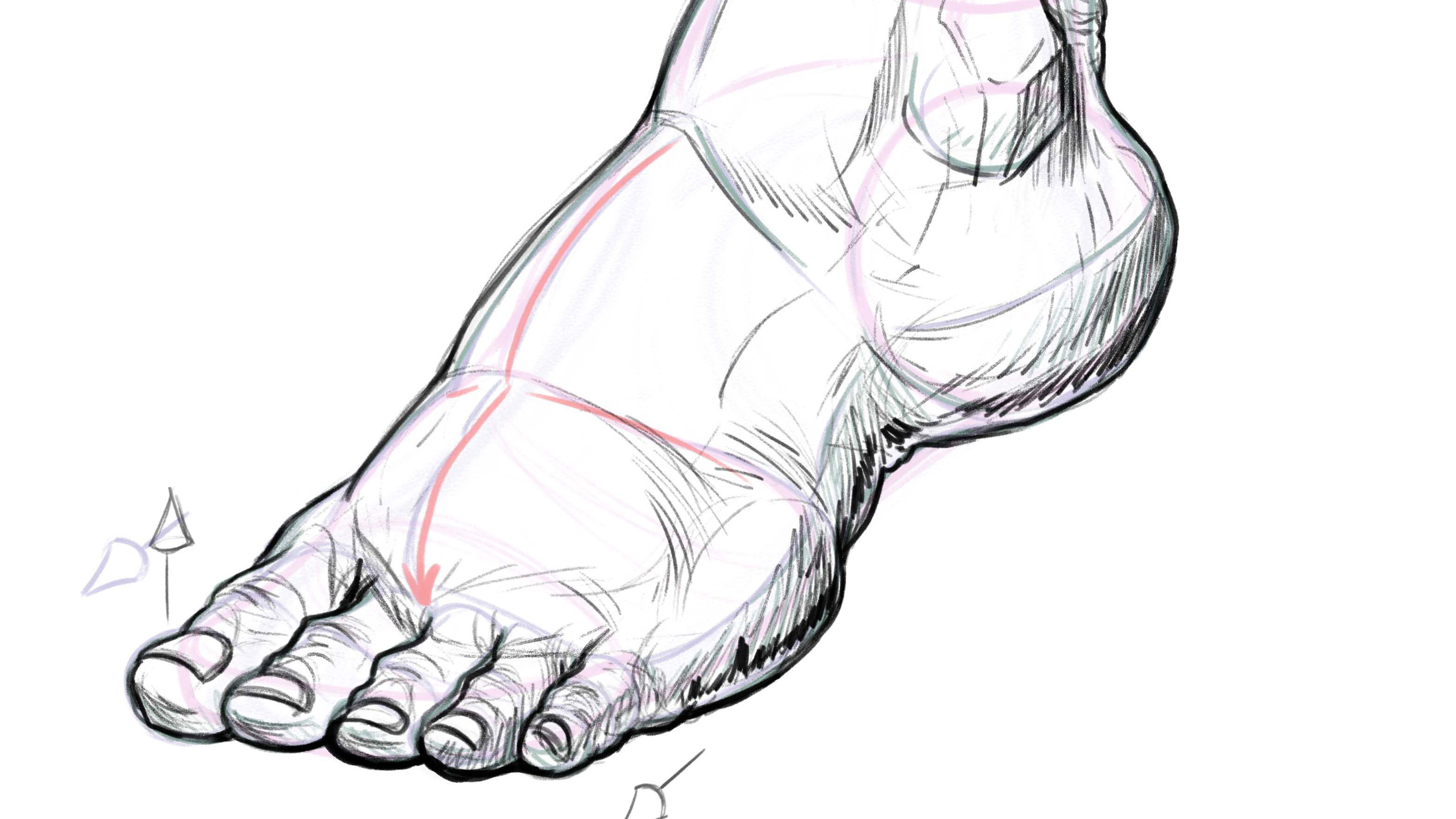 How To Draw Feet Creative Bloq