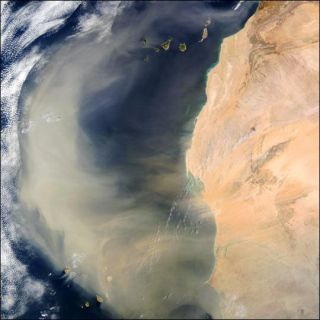 dust storms effect hurricanes