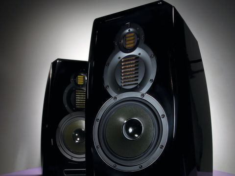 Adam Audio Tensor Delta