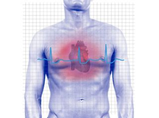 Heartbeats Hint at Personality Traits | Heart Health | Live