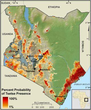 Tsetse fly map