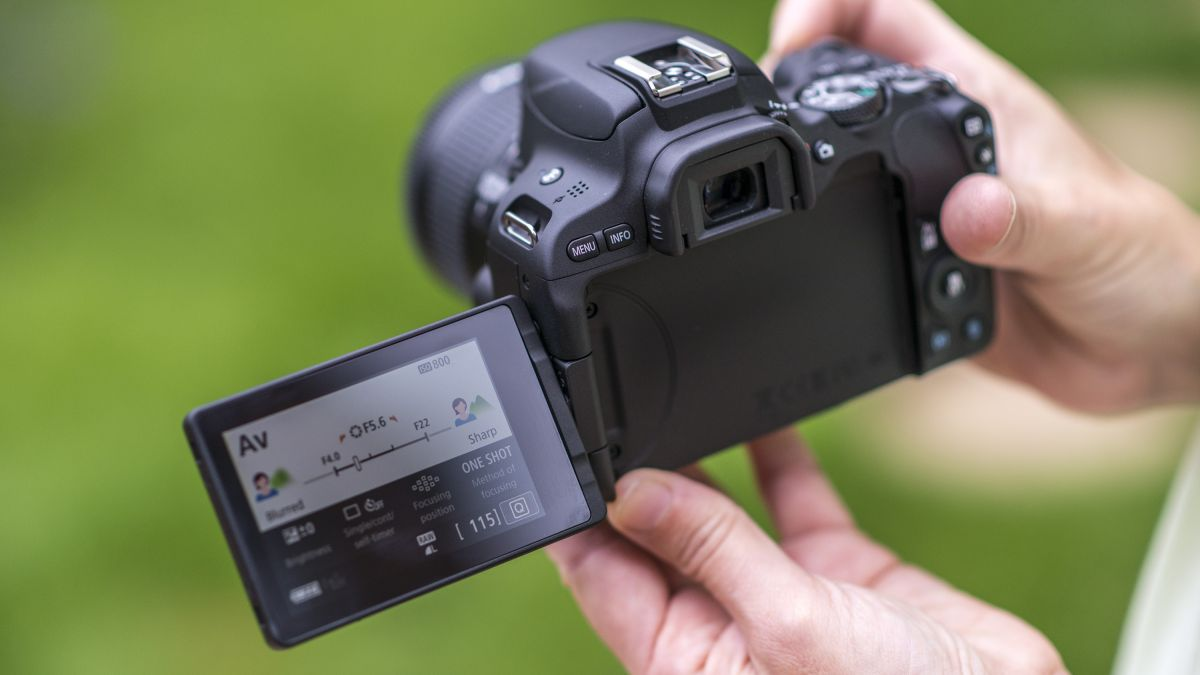 Best cheap camera 2019: 12 budget DSLRs, compacts and mirrorless