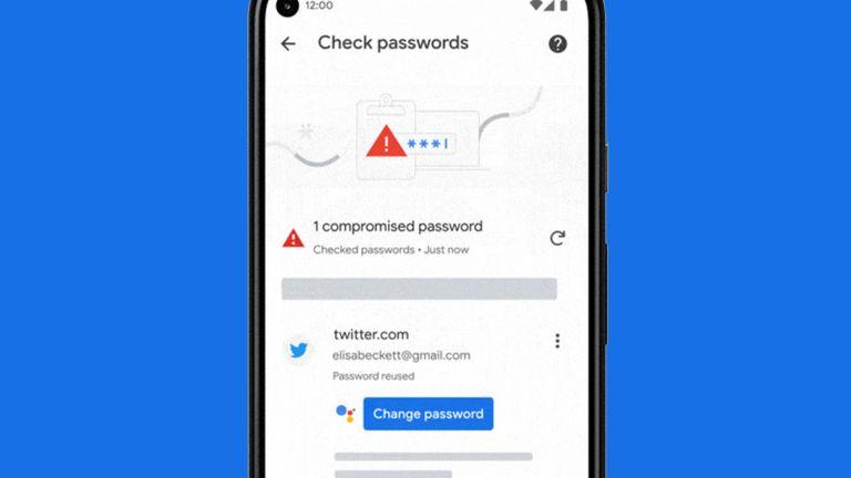 Google Password Manager
