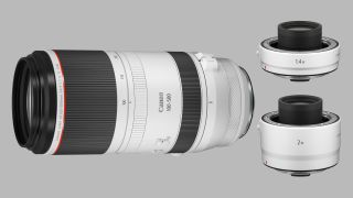 Super telephoto Canon RF 100-500mm, plus RF 1.4x and 2x Extenders announced