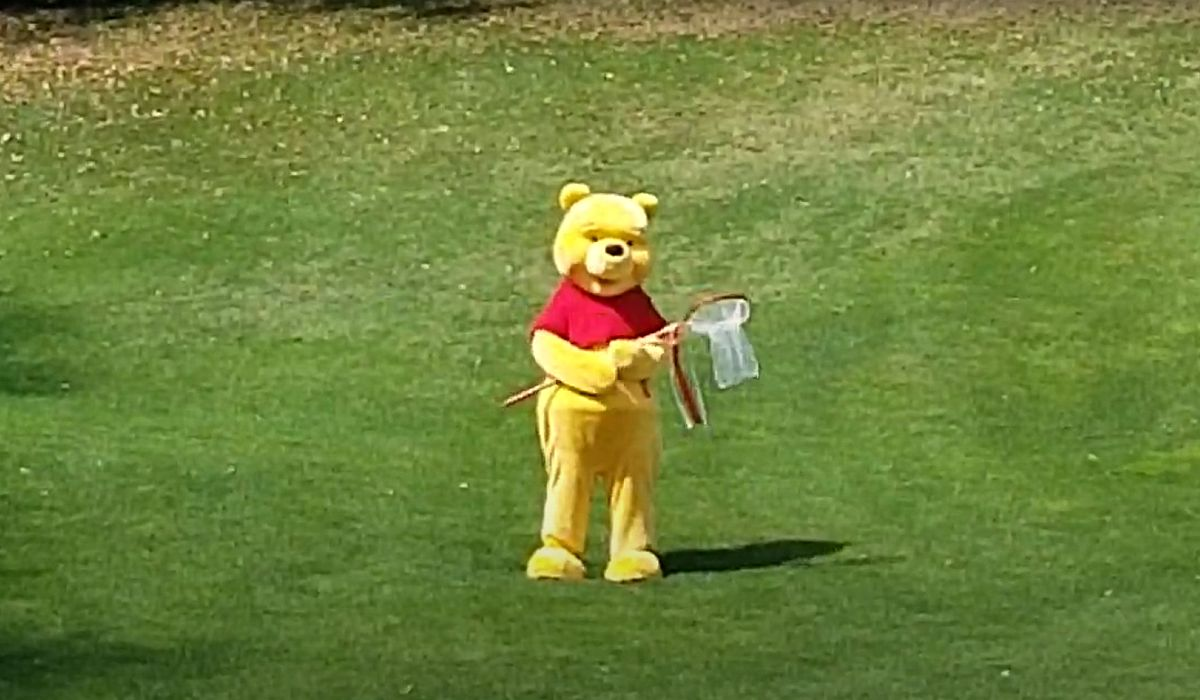 Winnie the Pooh at Epcot