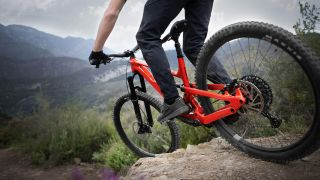 Mullet bike YT Capra