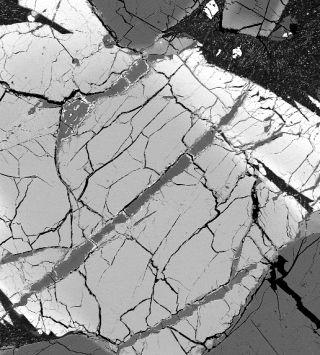 Mars meteorite veins