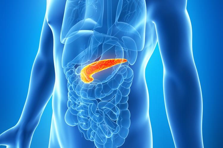 Pancreatic
