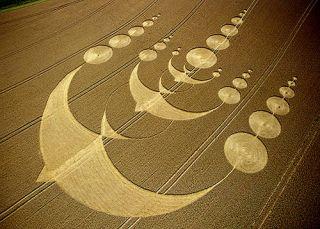 bird crop circle in England