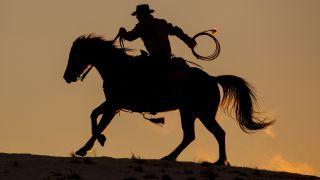 Cowboy rides a horse