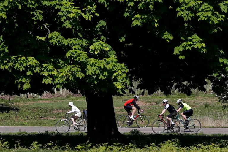 Cyclists in Richmond Park, west London