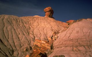 Petrified Forest National Park NPS Archive