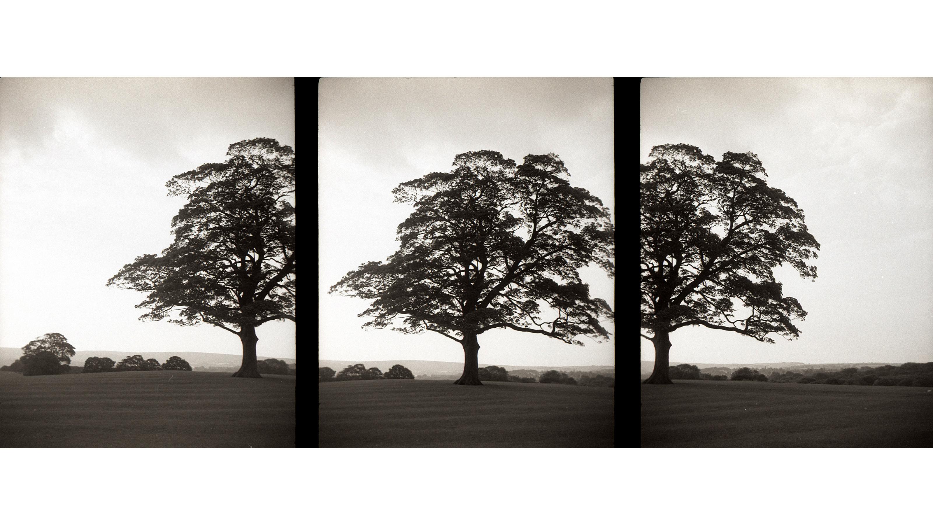 Three consecutive frames taken with a Mercury II half-frame camera