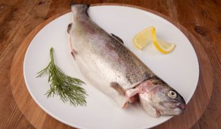 fish-dinner-101006-02