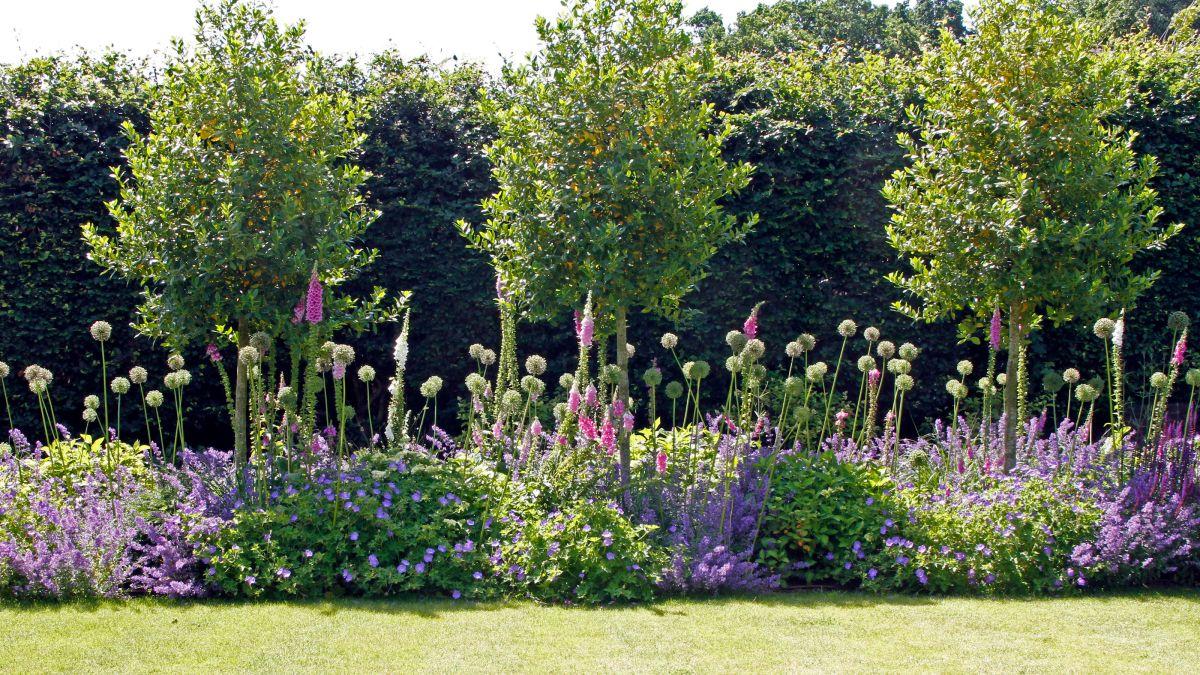 Garden ideas – inspiration and ideas for outdoor spaces