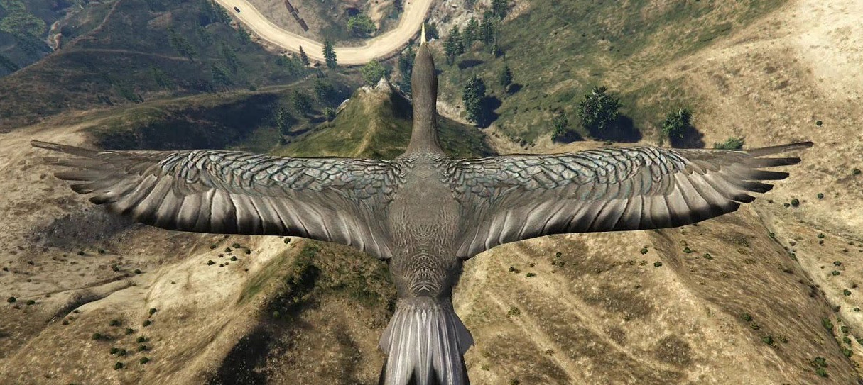 GTA 5's first PC patch fixes username issues, crashes, birds