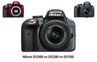 Nikon D3300 vs D3200 vs D3100: which camera should you choose