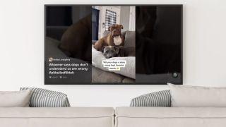 TikTok app on Samsung TVs